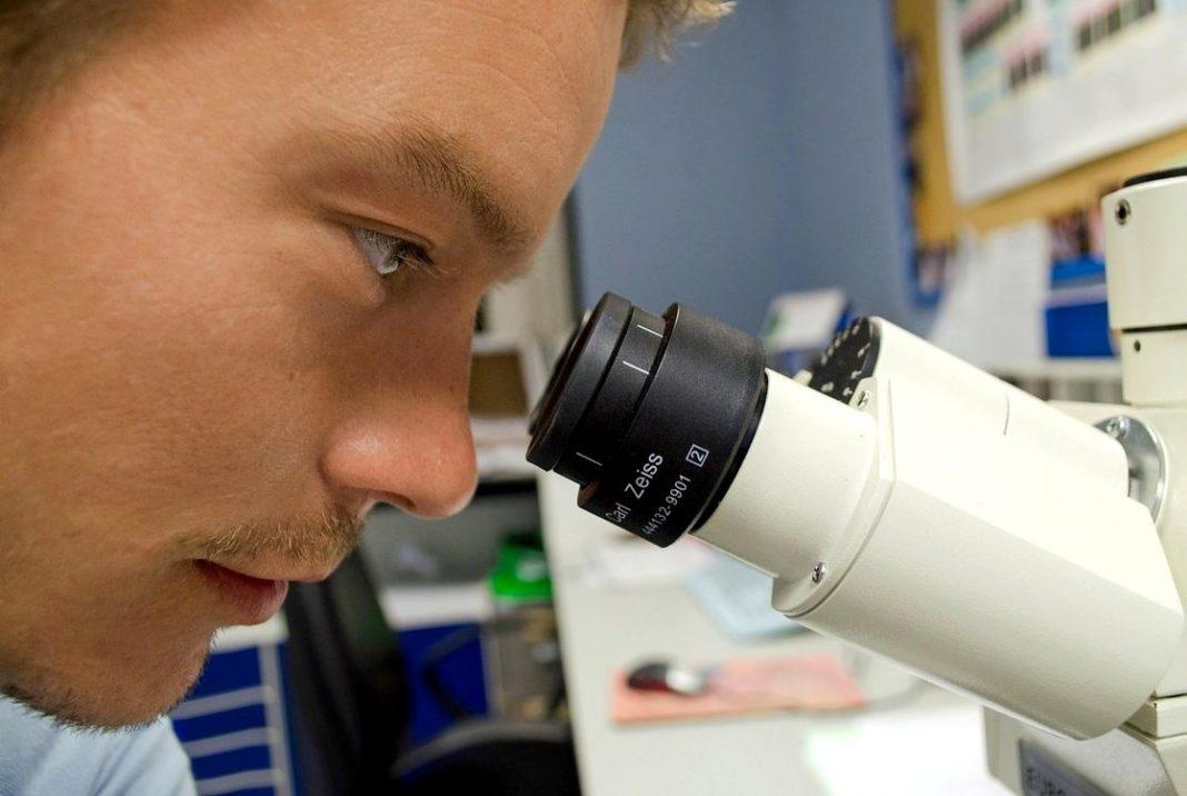 Do vědy a výzkumu B
