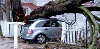 pojištění rizika živelních pohrom
